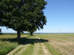 chemin-infini-juin2017-chamaneetmarinette